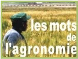 Pour lire les Mots de  l'Agronomie (fr)
