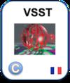 LogoWicriSicVsst2021Fr.png