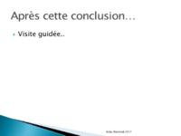 Acfas (2017) Ducloy Diapositive20.png